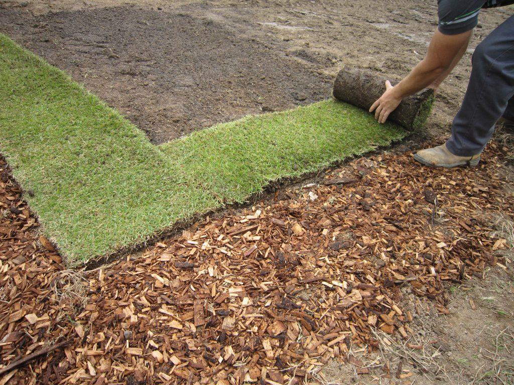 Как своими руками уложить готовый газон