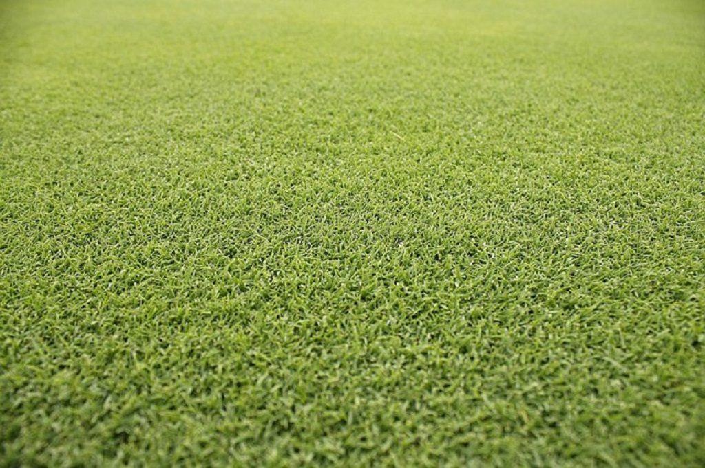 Как закрепить искусственную траву